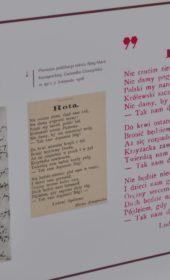 2017 Cieszyn 1918 Wystawa planszowa 11 11 LB (25)